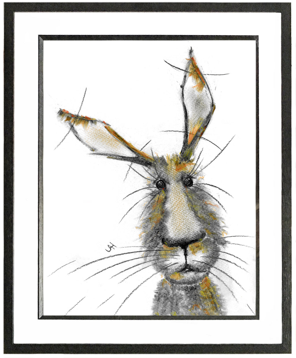 Bertie Framed Hare Illustration | GORGEOUS GEORGE