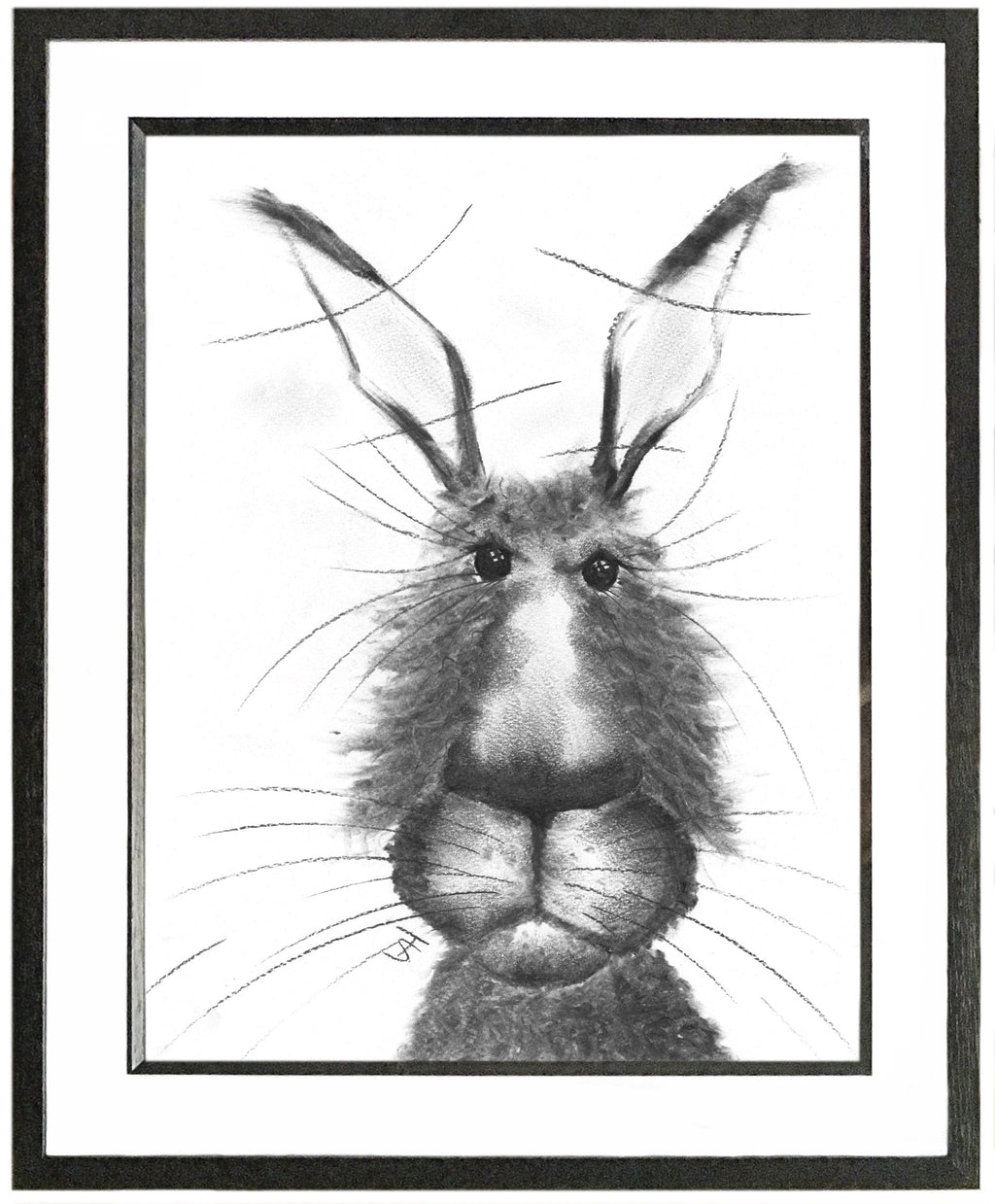 Fredrick Framed Hare Illustration | GORGEOUS GEORGE