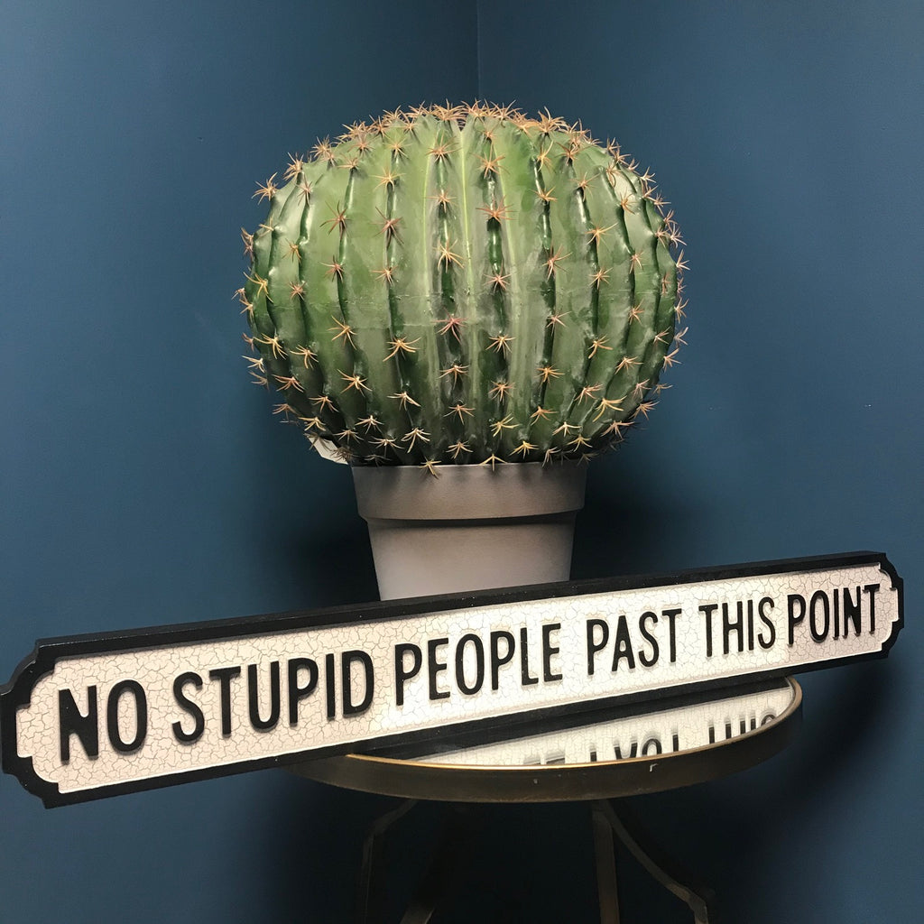 No Stupid People Past this Point Wooden Street Sign | GORGEOUS GEORGE