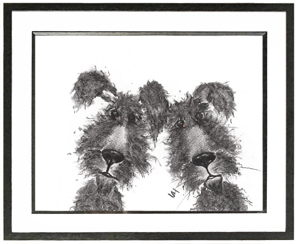 York & Macey Framed Shaggy Dog Illustration | GORGEOUS GEORGE