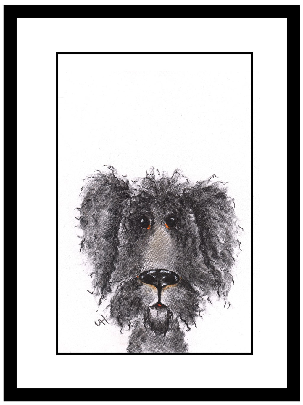 Molly Framed Shaggy Dog Illustration | GORGEOUS GEORGE
