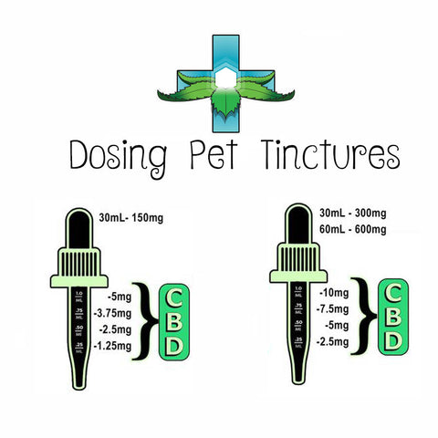 dosing cbd oil for dogs and cats