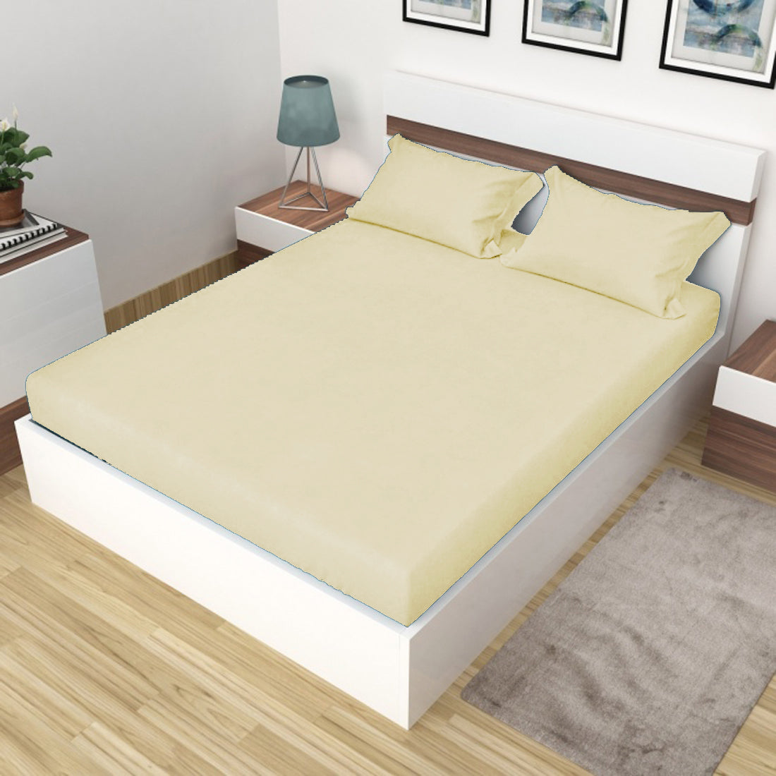 AURAVE Plain Cotton 210 TC Fitted Single Bedsheet - 36 x 72 inches - Beige