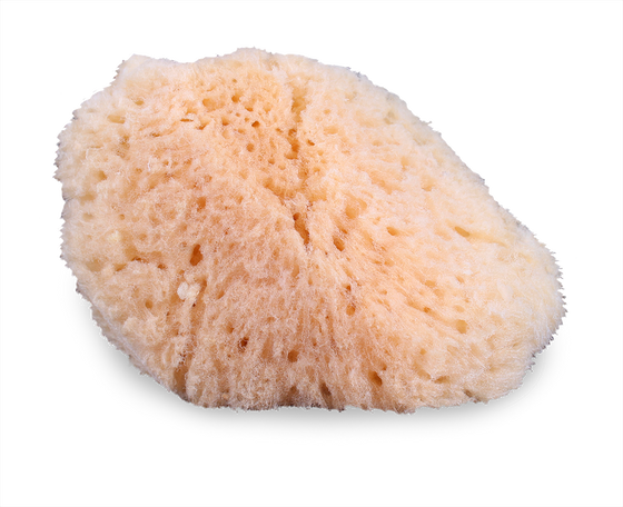 Mehron Natural Sea Sponge Applicator