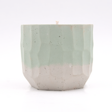 Load image into Gallery viewer, Backcountry Pine - 4 ounce Hand Poured Soy Candle - Concrete
