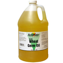 Animed Wheat Germ Oil Blend - TATO'S MALLETS