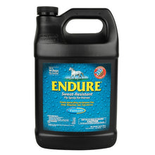 Endure Fly Spray 1Gal - TATO'S MALLETS