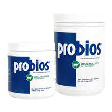 Probios Dispersible Powder - TATO'S MALLETS