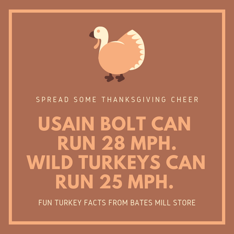 USAIN BOLT CAN RUN 28 MPH.  WILD TURKEYS CAN RUN 25 MPH.