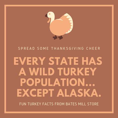 EVERY STATE HAS A WILD TURKEY POPULATION... EXCEPT ALASKA.
