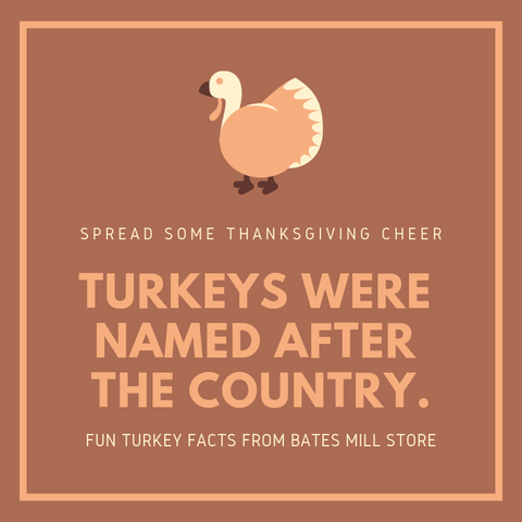 Turkeys were named after the country.