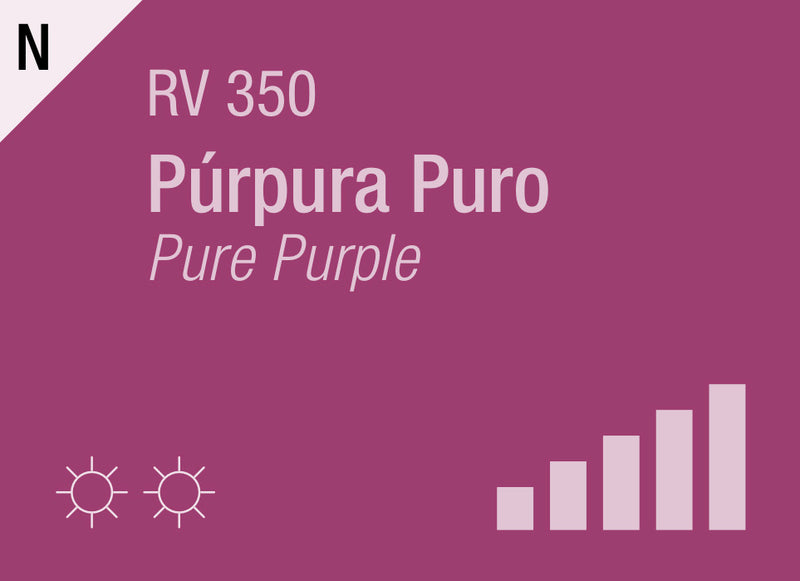 Pure Purple RV-350