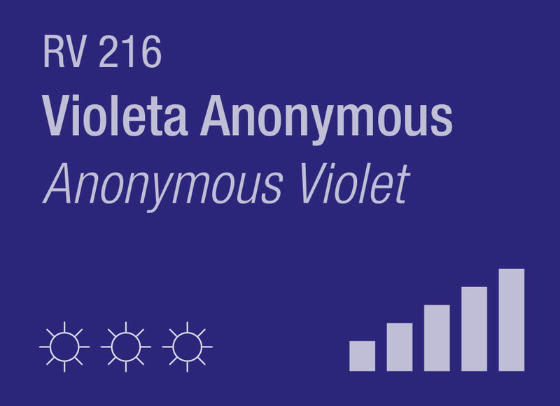 Anonymous Violet RV-216