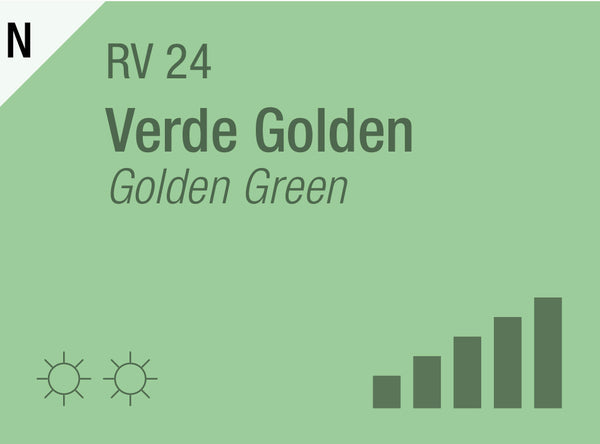 Golden Green RV-24
