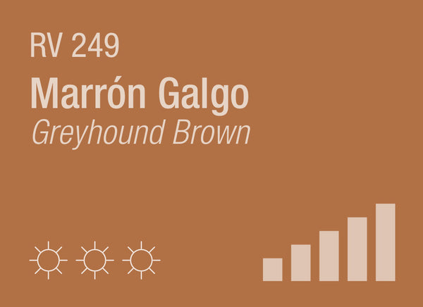 Greyhound Brown RV-249