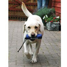 Clix Retriever Training Aid
