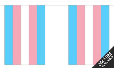 Transgender Flag Banner on String