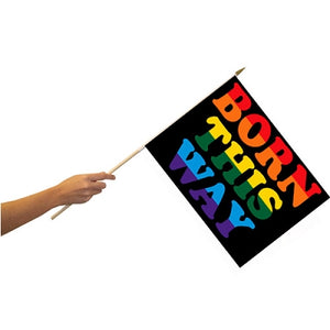 Born This Way 12'' x 18'' Flag on a Stick