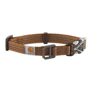 CAR-DOG COLLAR-P000034520103-201-MEDIUM