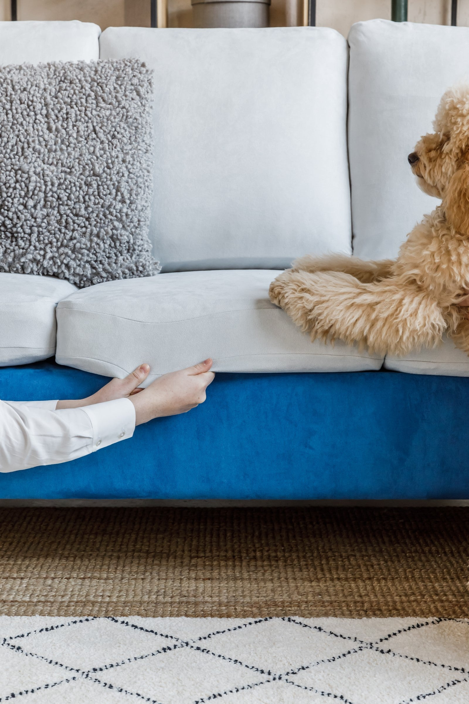 No More Smells and Scratching - Slipcover Care Guide for Pet Owners
