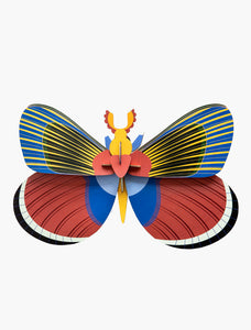 Wall Decoration | Giant Butterfly