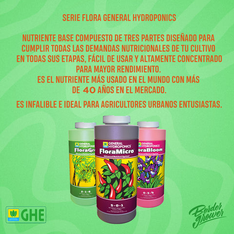 grow shop guadalajara, grow shop monterrey, grow shop tijuana, grow shop online, grow shop a domicilio, grow shop barato, grow barato, grow shop cdmx, grow shop hydroponics, grow shop merida, grow shop usa, grow shop mexico semillas, growshop mexico, growshop tijuana, growshop,