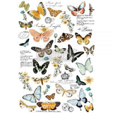 "NEW! *Butterfly Dance* - Rub On Transfer  24"" x 35"" -(Cut into 3 sheets) - Redesign with Prima"