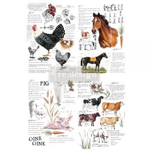 "NEW! *Farm Life* - Rub On Transfer  24"" x 35"" -(Cut into 2 sheets) - Redesign with Prima"
