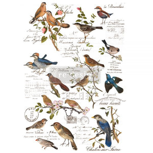 "NEW! *Postal Birds* - Rub On Transfer  24"" x 35"" -(Cut into 3 sheets) - Redesign with Prima"