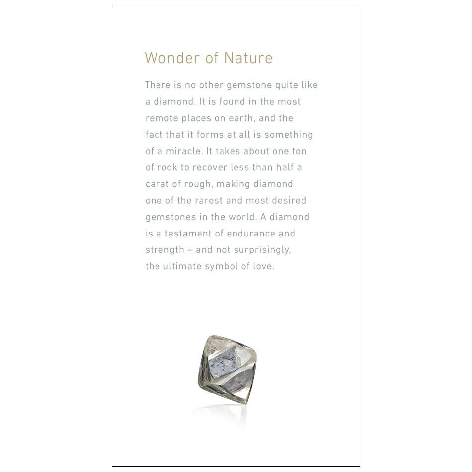 "Brochure page with heading ""Wonder of Nature"", text, and rough diamond"