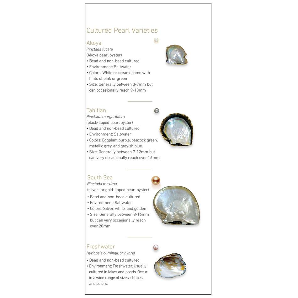 7 Pearl Value Factors brochure panel, featuring bulleted information about 4 varieties of pearl