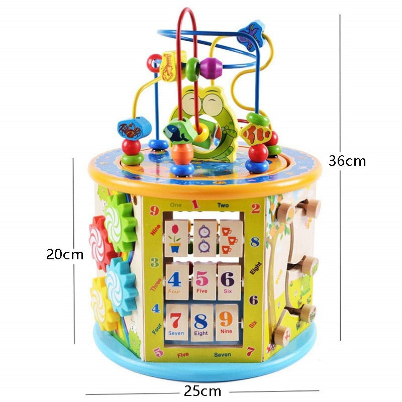 Montessori Early Childhood Learning Toys