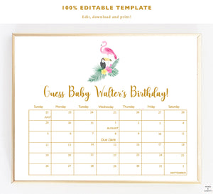 Tropical Baby Shower Games, Decorations, Ideas, Flamingo Baby Shower, Due Date Calendar, Editable Template, Guess Baby Due Date, Party Games