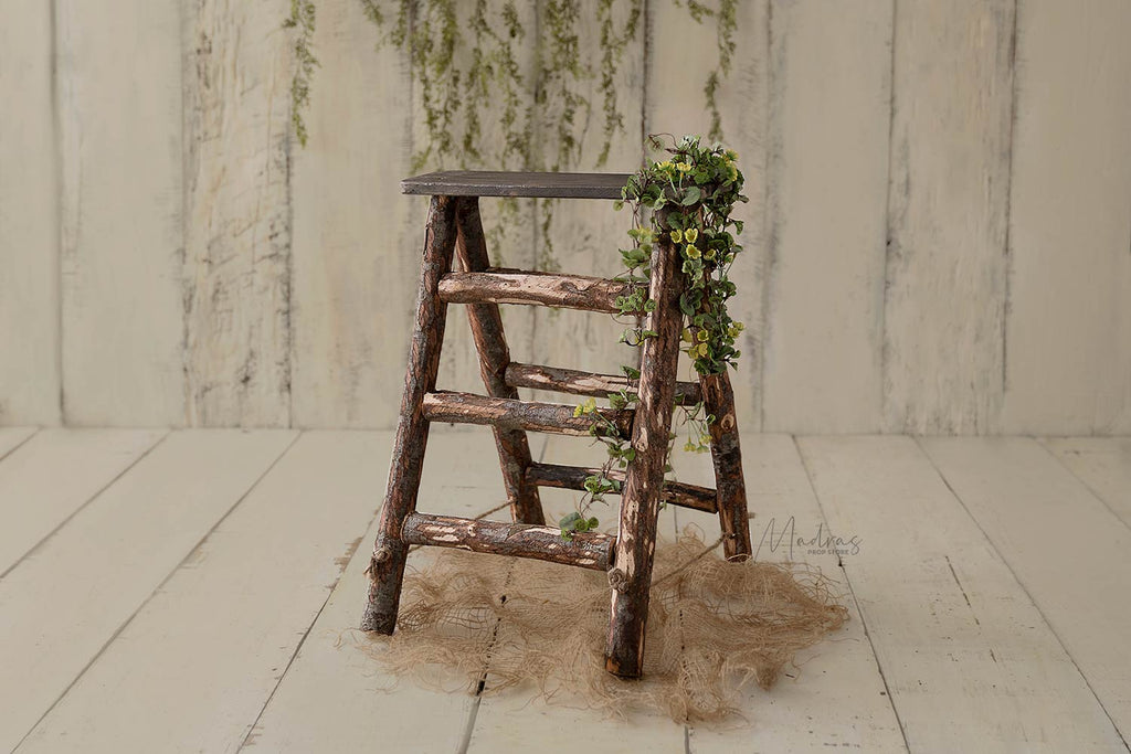 Rustic Log Ladder