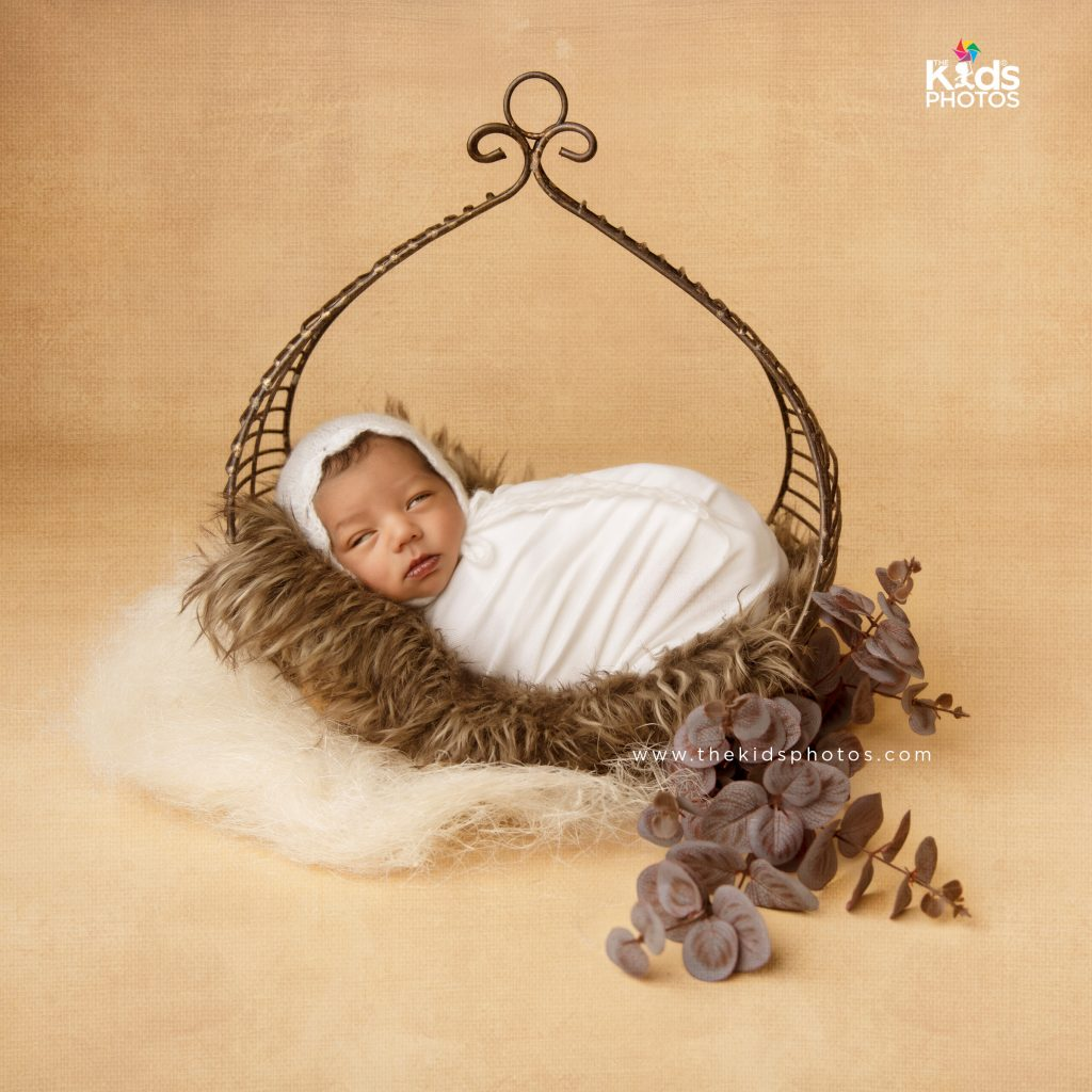 Newborn Brass Swing