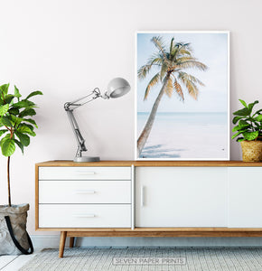 Coastal Palm Tree and Blue Sky. Tropical Print