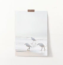Load image into Gallery viewer, Coastal Seagulls and Ocean Waves Wall Art