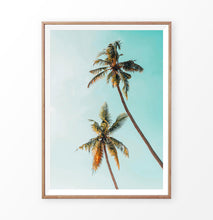 Load image into Gallery viewer, Saturated Palm Tree Photo
