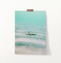 Load image into Gallery viewer, Starfish wall art, green starfish, turquoise water print