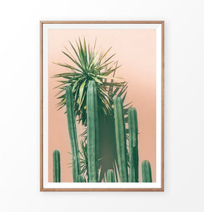 Orange Desert and Green Cactus Wall Art