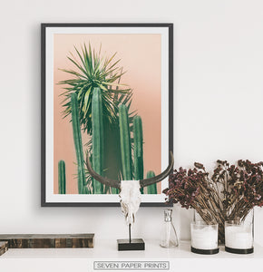 Green Cactus on pink | Botanical Wall Art