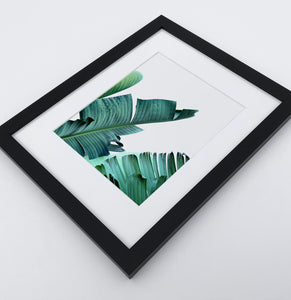 A framed photo print with banana leaves 3