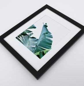 A framed photo print with banana leaves 2