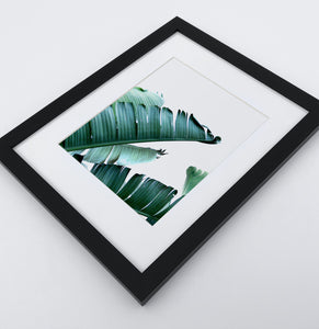 A framed photo print with banana leaves