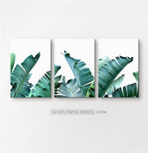 Load image into Gallery viewer, Tropical palm leaf canvas wall art set of 3 #148