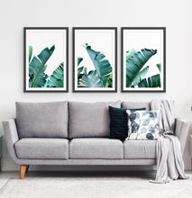 Load image into Gallery viewer, Three framed photo prints with banana leaves 2