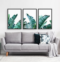 Load image into Gallery viewer, Three framed photo prints with banana leaves 3