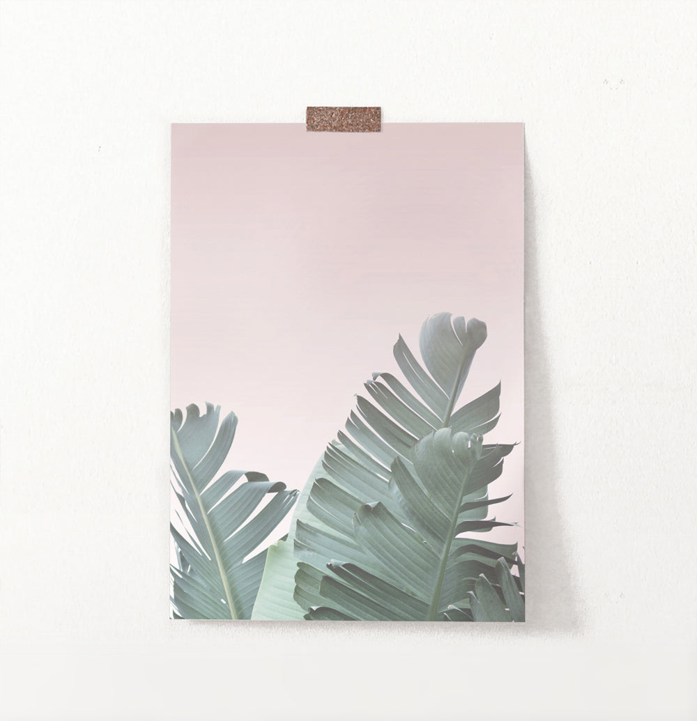 Tropical Leaves with Blush Pink Background