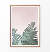 Load image into Gallery viewer, Banana Leaf on the Pink Background Print