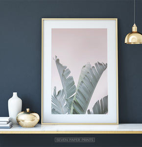 Banana Leaves on Pink Tropical Decor on Dark Wall